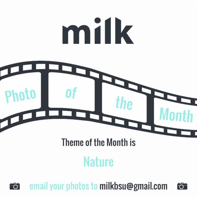 Still time to get your entries in for milks photohellip