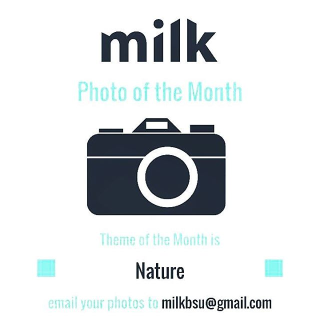 Still time to enter your photos in for milks photohellip